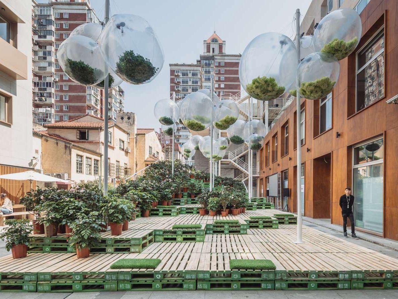 Urban Bloom