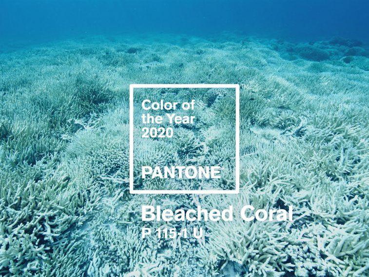 colori per il 2020